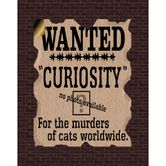 Curiosity Killed the Cat Wanted Poster - Vintage