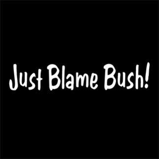 Blame Bush