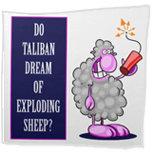 Do Taliban Dream of Exploding Sheep?