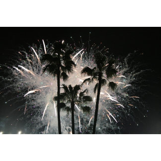 Fireworks behind palm  trees