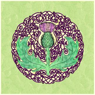 Celtic Scottish Thistle