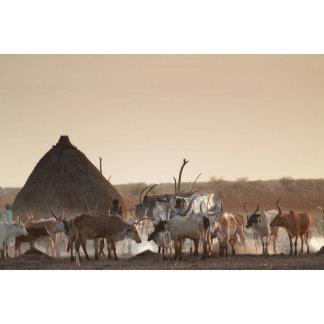 Malakal, village of Dinka ethnic group