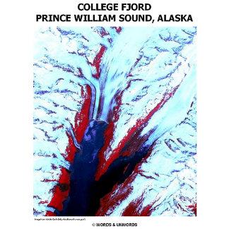 College Fjord Prince William Sound, Alaska