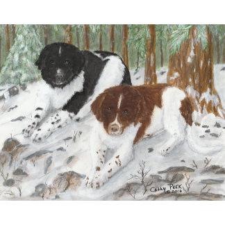 Dog Canine Art