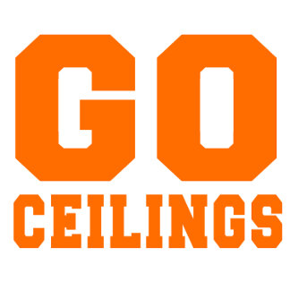 CEILING FAN (Go Ceilings)