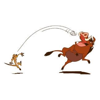 Lion King Timon And Pumbaa playing