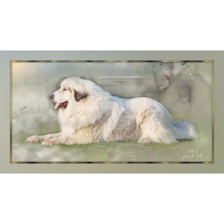 03# Great Pyrenees Aaron Gifts