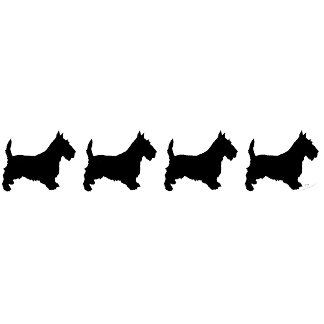 Scottish Terriers all in a Row