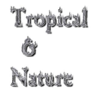 TROPICAL-&-NATURE