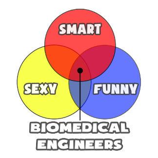 Venn Diagram .. Biomedical Engineers