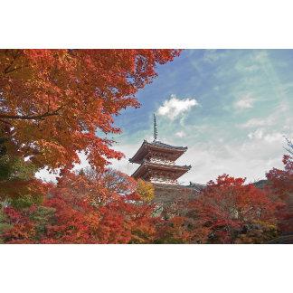 Japan, Kyoto, Pagoda in Autumn colour
