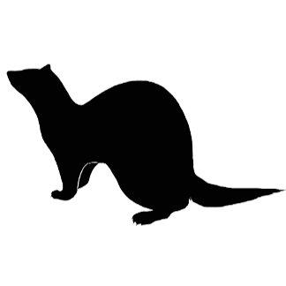 Ferret (8)  black