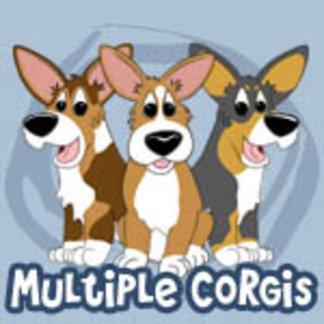 Multiple Corgis