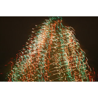 Christmas light tree, from a Florida Palm Tree pic