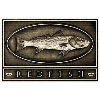 Redfish Vintage Black & White
