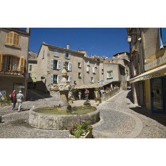 France, Provence, Valensole. Tourists explore