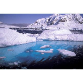 Antarctica. Expedition through icescapes