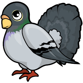 Pigeon Design