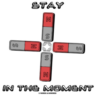 Stay In The Moment Four Magnets Quadrupole Moment