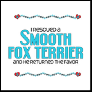 I Rescued a Smooth Fox Terrier (Male Dog)