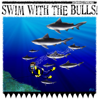 Swim With The Bulls