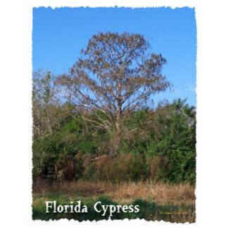 Florida Cypress Vertical