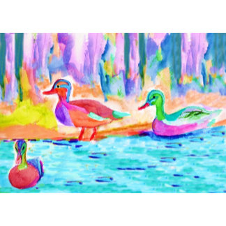 Duck Study