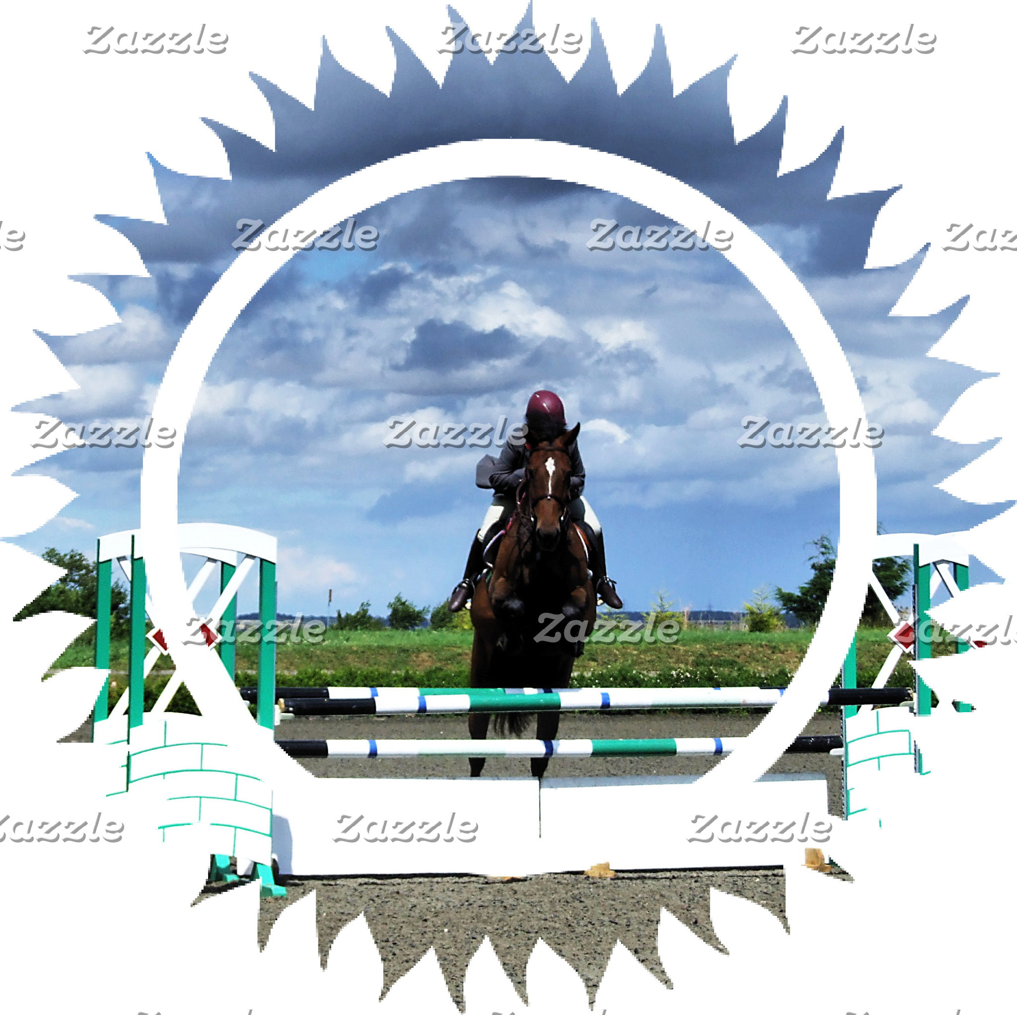 Hunter Jumper Horses