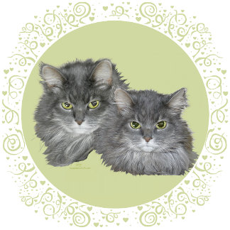 Two Lovely Longhair Cats