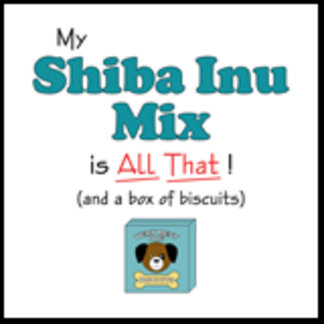 My Shiba Inu Mix is All That!
