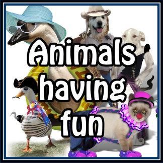 ` Animals