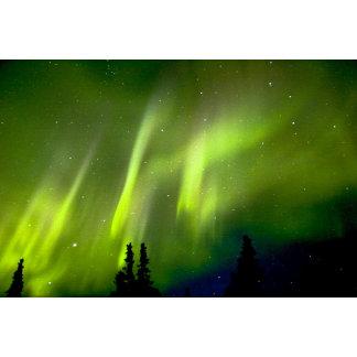 USA, Alaska, Chena Hot Springs. Aurora 3
