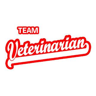 Team Veterinarian