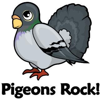 Pigeons Rock!