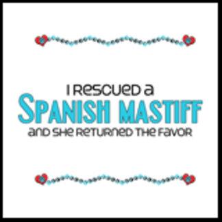 I Rescued a Spanish Mastiff (Female Dog)
