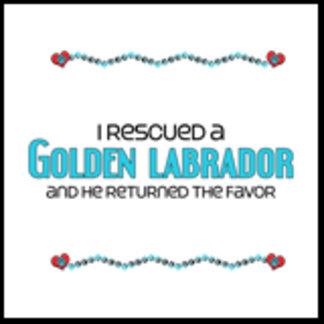 I Rescued a Golden Labrador (Male Dog)