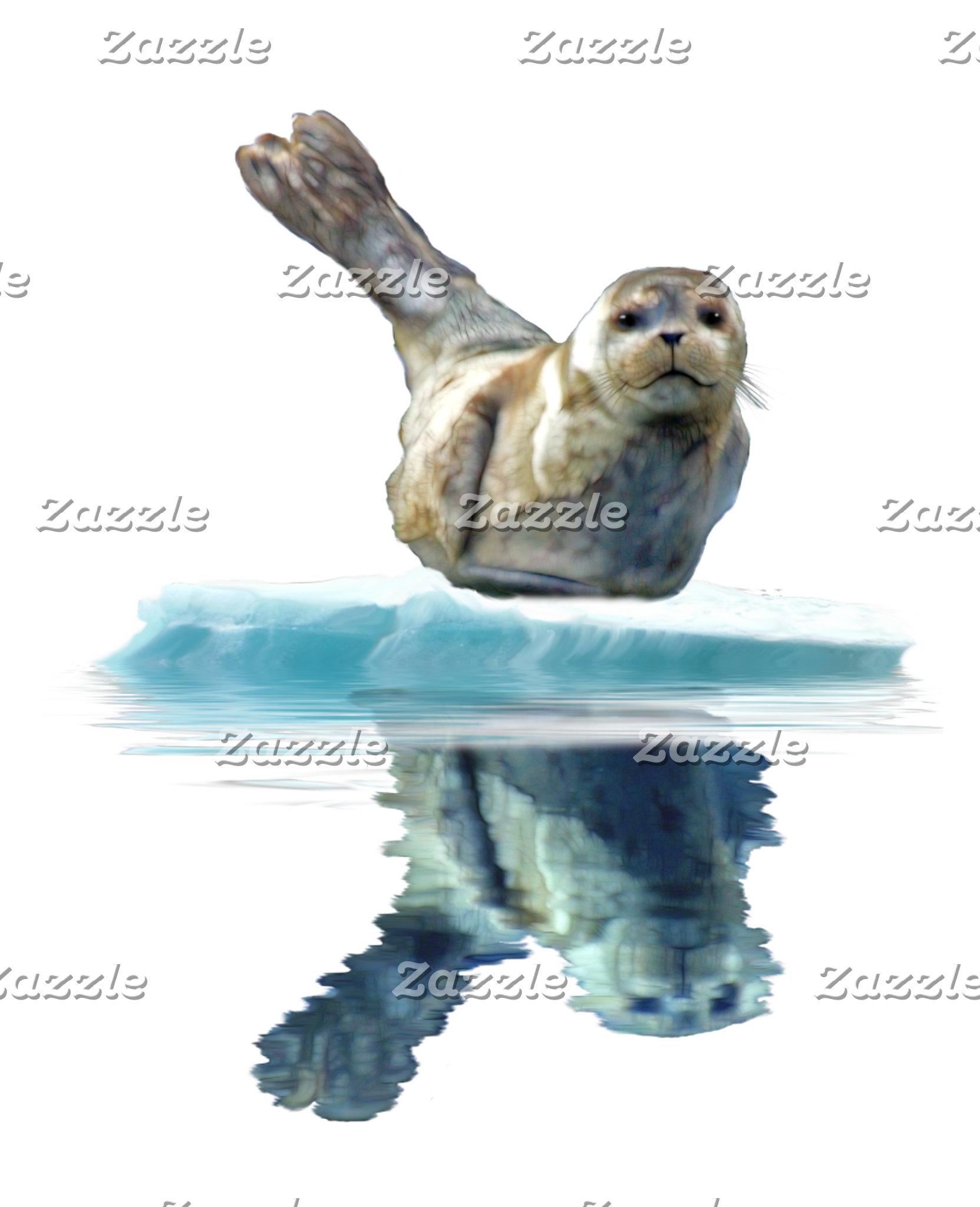HARP SEALS, MARINE ANIMALS