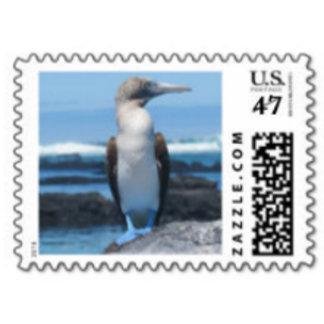 Animal Postage Stamps