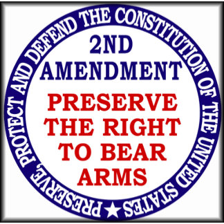 Preserve The Right To Bear Arms