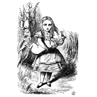 Alice and the Pig