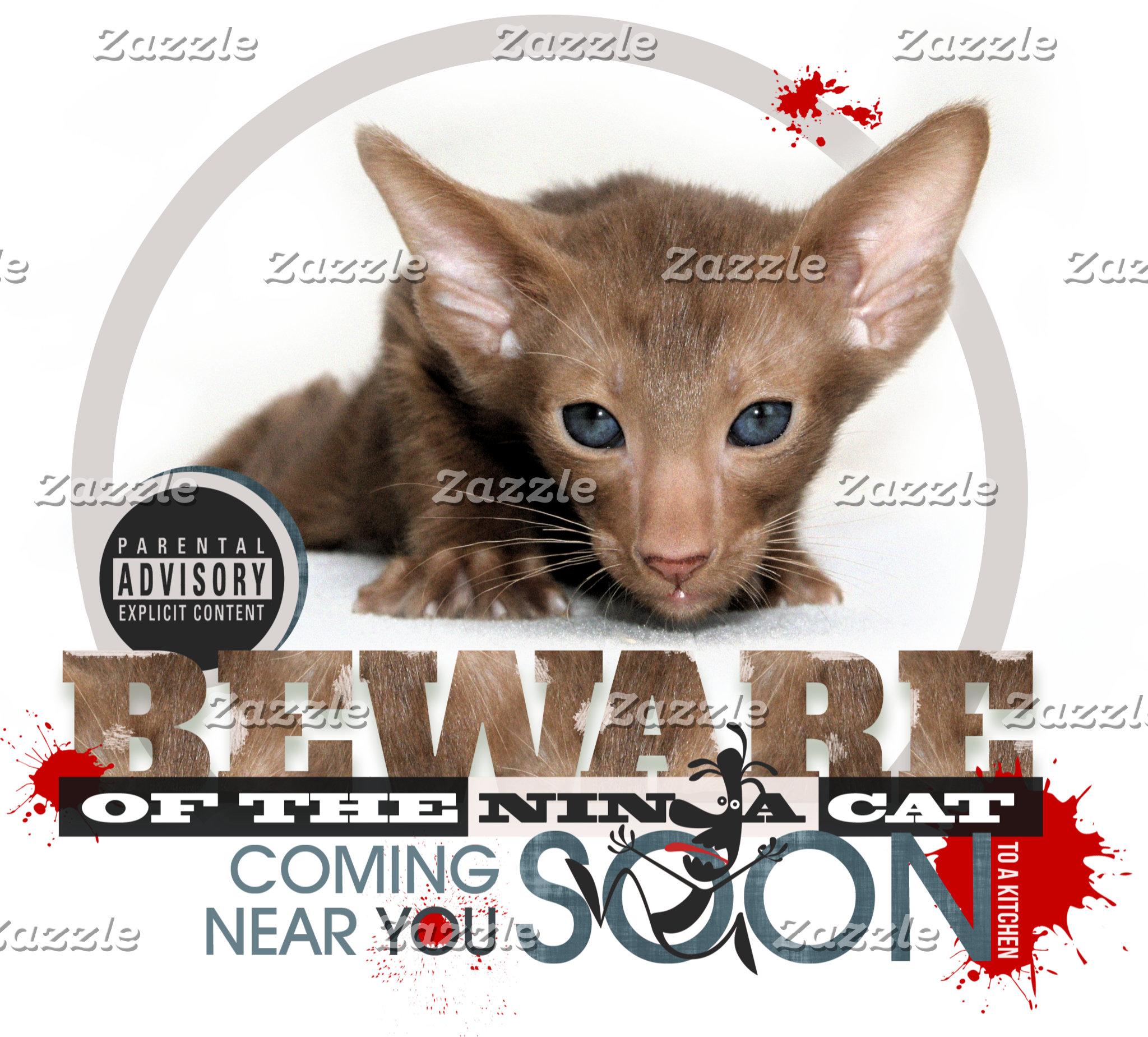 Beware of the Ninja Cat