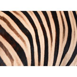 ♡ animal fur / skin