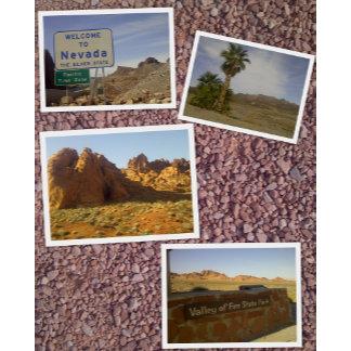 Nevada - Desert