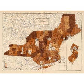 109 Typhoid fever NY, NJ, New England