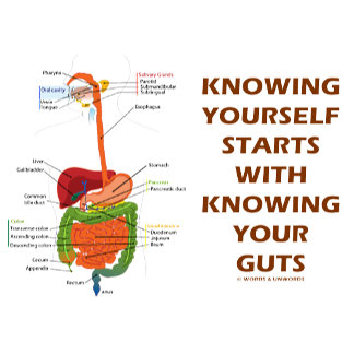 Knowing Yourself Starts With Knowing Your Guts