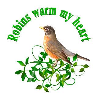 Robins warm my Heart
