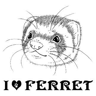 Ferret (5)