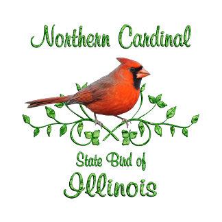 Cardinal Illinois Bird