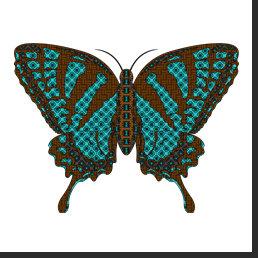 Native Swallowtail