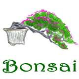 Bonsai Sayings and Art, Bonsai designs & pictures